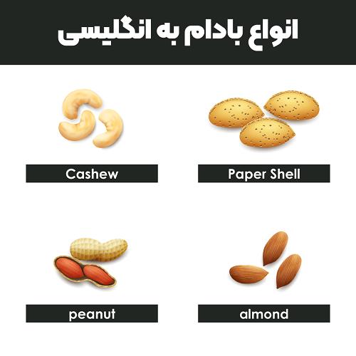 انواع بادام به انگلیسی