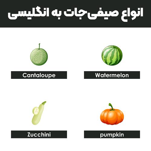 انواع صیفیجات به انگلیسی